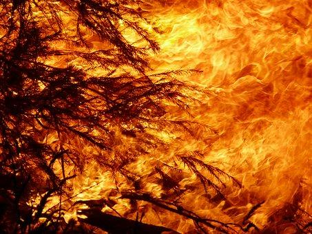Fire ban for Logan City and Scenic Rim
