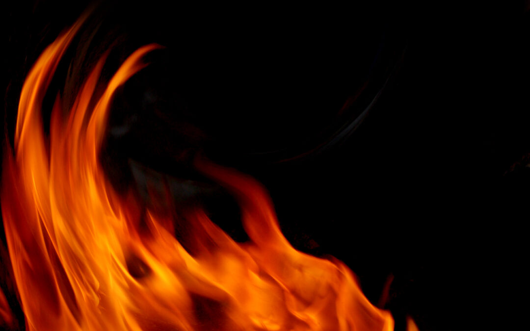Total fire ban declared for Logan City