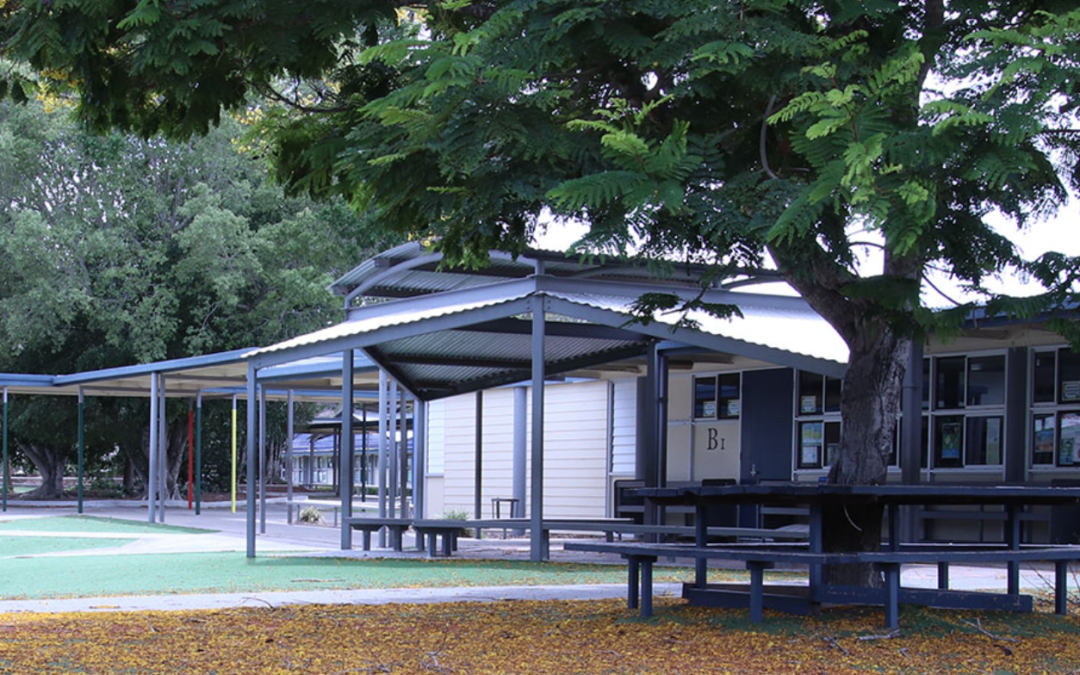 Windaroo State School cleared of COVID-19 infection